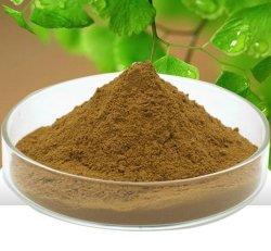 Certifiés casher isoflavones 100 % 8% 20% 40% 60% 80% HPLC extrait de trèfle rouge