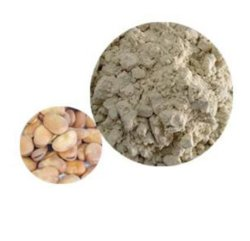 Vegan protéine Fava Bean
