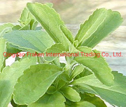 Высокое качество Rebaudioside Steviosides & a - Stevia