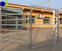 6 Carris Hot-Dipped Estaleiro de gado de Metal Galvanizado