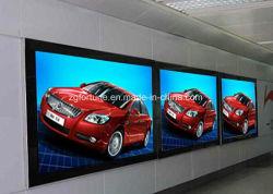 Impresión personalizada con retroiluminación de interior y exterior de Pet para publicidad