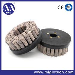 Spazzola industriale personalizzata del disco della spazzola per il polacco di sbavatura (dB-200031)
