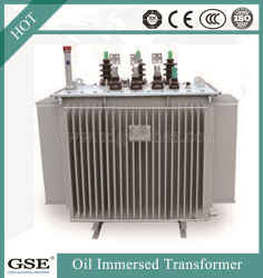 10kv 35kv de Speciale Transformator In drie stadia van de Macht van het Voltage van de Distributie van de Macht