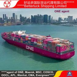 Китая и Японии Осаке контейнерных перевозок с точки зрения затрат операторов брелок Гуанчжоу Наньша морские грузовые перевозки экспедитор