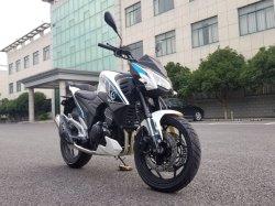 Les vérins de 250cc Double moto, mettre en place 250cc, 300cc, 400 Moteur de la CCC