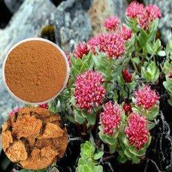 Bruin of van het Poeder bruin-Redish het Uittreksel CAS 97404-52-9 van de Wortel van Rhodiola Rosea