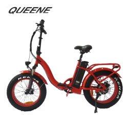 Pliage Queene/ Vélo Electrique vélo électrique off Ebike pneu de route