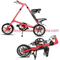 새로운 자전거 스포크 크롬 프레임 투 스프링 포크 접이식 자전거 백 포함