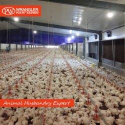 Bevitore automatico del pollame dell'alimentatore del pollame per l'agricoltura del pollo da carne