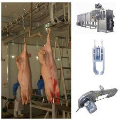 Schwein-Schlachthaus-Schlachthof-Schlachten-Gerät