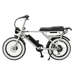 إطار 20 بوصة، 48V500W، دراجة هوائية كهربائية بأفانغ ذات محرك خلفي بدون فرشاة 100 إلى 240 فولت تقريبًا، 50-60 هرتز، شاحن ذكي، Sans Plug as Fina with Comfort Seat