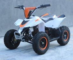 ATV-8e banheira de vender Electric Mini ATV Fábrica e elevadores eléctricos de mini-Moto para crianças