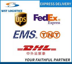 中国からへのプロフェッショナル貨物取り扱い業者 UPS/DHL/FedEx/TNT エクスプレス貨物サービス 米国 / カナダ / 英国 / ドイツ / ヨーロッパ