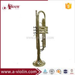 Cuerpo de latón lacado oro estudiante de la llave de Bb Trumpet (TP8001G)