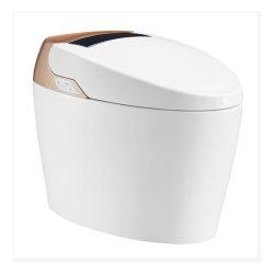 Het Water die van Hot&Cold van de Badkamers van huishoudapparaten het Slimme Toilet van het Bidet van WC wassen