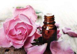 Olio essenziale puro 100% naturale della Rosa con l'imbiancatura