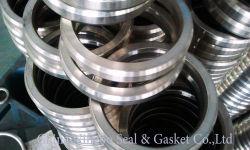 Revestido de plástico do anel de vedação de válvula ou no flange