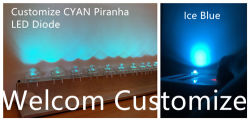 Bienvenido Diodo LED de personalizar el color, el diodo LED Piraña, cian, azul hielo, etc.
