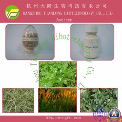 Ametryn (97%TC, 80%WP, 90%WDG, 500SC)-herbicide