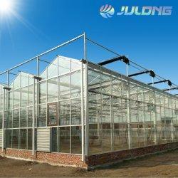 Venlo Multi-Span de alta calidad de efecto invernadero de vidrio se utiliza para sistema de cultivo hidropónico de tomate vegetal y/Flower/fresa/Pepino/Lechuga Pimiento/Climatización automática