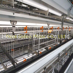 H Type Chicken Broiler Landbouwkooi 4 Tiers Hot vergalvaniseerd Gevogelte House Quail Automatic Layer Egg UK