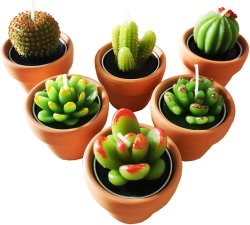 Tealight Cactus Velas com pequenos vasos de terracota titular para decoração
