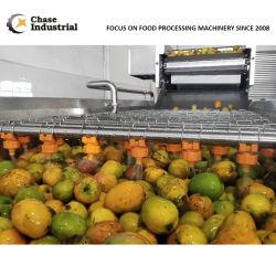 مانجو/أناناس لصق صنع خط معالجة الإنتاج من تشيس