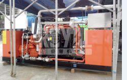 본래 미국 상표 엔진에 의해 강화되는 400kw/500kVA 50/60Hz 천연 가스 발전기