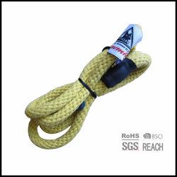 Entraînement à la corde en coton biologique en chien avec étiquette tissée