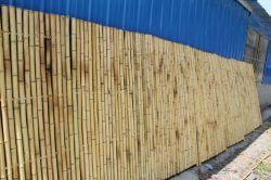 Lw-F25 자연적인 대나무 담 위원회, 대나무 스크린 위원회, 대나무 Trendlines