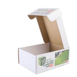 Caixa de papel de cor personalizada para embalagem de gramíneas