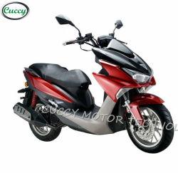 럭셔리 중국 치나 4행정 150 참조 / 125cc Moto 가솔린 오토바이 가스 150cc 스쿠터(GT-FS)