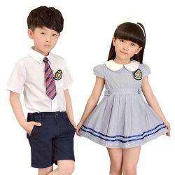 Kleren van de Meisjes van de School van de Kleding van de Overgooier van de School van de Fabriek van de douane de Directe Geplooide Eenvormige