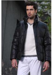 우연한 오리 아래로 재킷 남자를 아래로 입힌다 대 고리 의복 형식 간단한 사업 의류 의복을 시니 경기를 하십시오