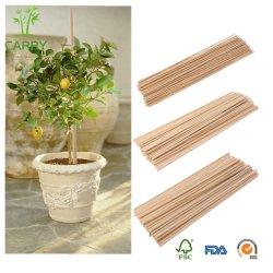 Enjeu En bois naturel, les plantes poussent l'appui de bâtonnets de plantes de jardin en bambou de Cannes, de la plante fleurit l'appui Stick canne (5x300mm)