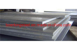 تدحرج عالي الجودة على البارد/الساخن S31803 201 304 304 304 لترات 316 لترًا من الفولاذ المقاوم للصدأ لوحة الصلب/الملف في بيع ساخن