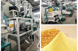 lavorazione del mais 150t/24h farina di mais