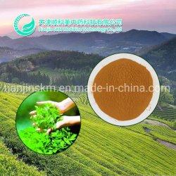 إمداد المصنع المواد المضافة الغذائية EGCG مستخرج الشاي الأخضر البوليفينول