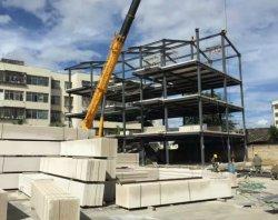Starkes hohes Anstieg-Stahlgebäude-Stahlrahmen mit Kleber-Vorstand