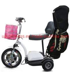 3 عجلة كهربائيّة [سكوتر] مدينة جوز هند سمين إطار العجلة [غلف كرت] درّاجة ثلاثية 3 عجلة [سكوتر] كهربائيّة
