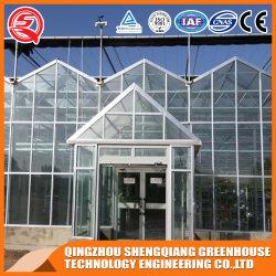 농업 다중 경간 설치해 야채 꽃 전람을%s 유리제 Hydroponic 녹색 집