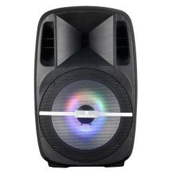 15 duim - Doos van de Spreker van de Spreker van de Rol van de Stem van de Versterker van de hoge Macht de Audio