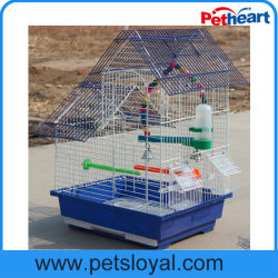 Amazon de suministro de productos estándar de Pet Bird Cage