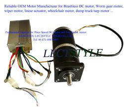 Motore senza spazzola di velocità di variabile tre di CC per lo scarico dell'automobile di sottopassaggio e del ventilatore