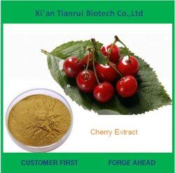 Preço de fábrica Wild Cherry Bark Extract Powder