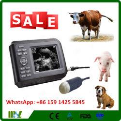 Equipo Médico Veterinario Venta caliente portátil escáner de ultrasonido (MSLVU04)