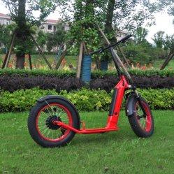 Adults Sale Best Cheap Fast 2 twee wielen opvouwbaar Krachtige elektrische motor met accu die op weg staat