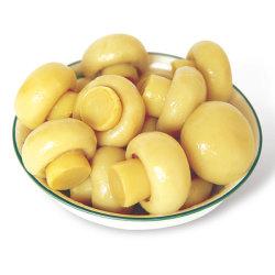 In Büchsen konservierte Nahrungsmittelin büchsen konservierter vollständiger Gemüsepilz mit Superqualität