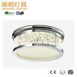 Forma redonda de alta calidad de la barra de vidrio transparente de la luz de techo LED 20W para Sala Liveing