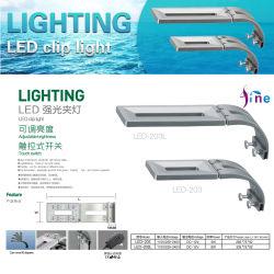 El acuario de agua salada de luz LED azul y blanco para el día y noche